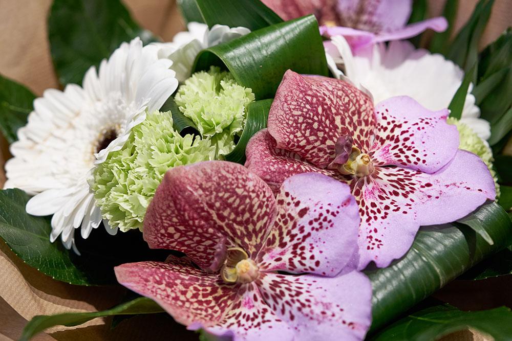 les-fleurs